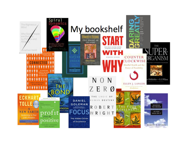 my-bookshelf-1